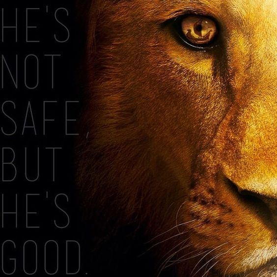 Proverbs 1:20–33- Not a Tame Lion - Royal Doors